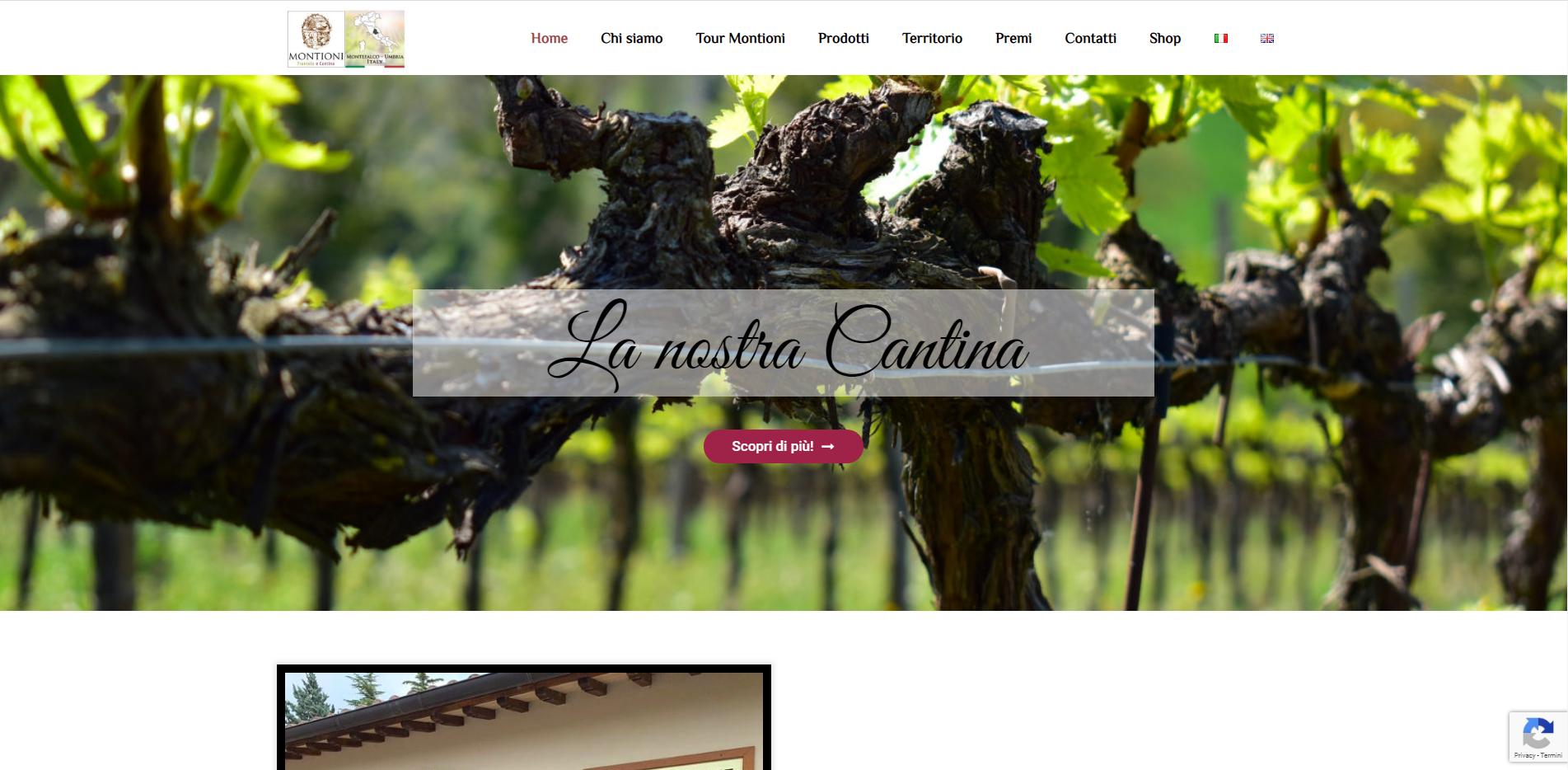home page sito gabirelemontioni.it